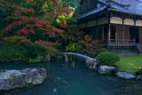 青蓮院 龍心池畔の紅葉と小御所