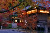 赤山禅院の紅葉の拝殿と神殿