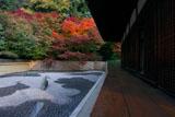 東福寺龍吟庵 方丈縁側と西庭の紅葉
