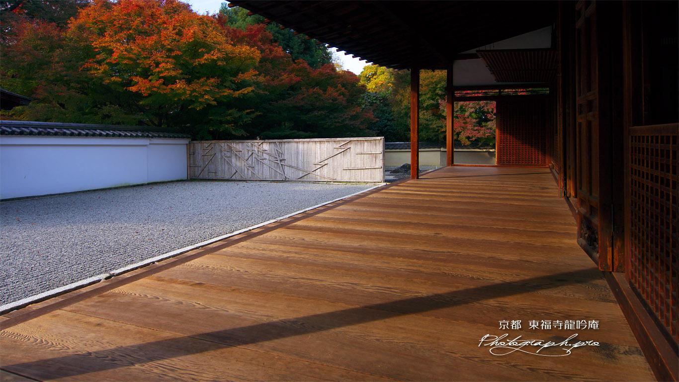東福寺龍吟庵 紅葉の南庭 壁紙
