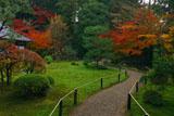 東福寺即宗院 庭園の紅葉