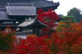 紅葉の東福寺方丈