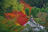 泉涌寺海会堂宝珠と紅葉