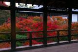 東福寺通天橋越しの紅葉と方丈