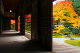 泉涌寺御殿からの庭園