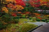 縁側から眺めた泉涌寺庭園