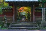 寿福寺 総門の額縁紅葉