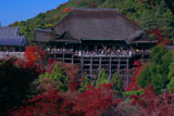 清水寺錦雲渓の紅葉と本堂
