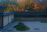 龍安寺 石庭と紅葉