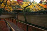 大徳寺高桐院の四脚門
