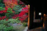 大徳寺高桐院の松向軒