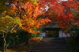 安楽寺 紅葉と山門