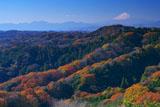 天園からの富士山と紅葉
