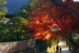 建長寺の紅葉と親子
