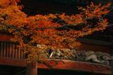 妙本寺 紅葉と二天門欄間