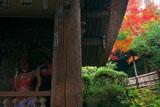 鎌倉 杉本寺仁王像と紅葉