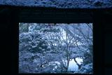 山門越しの雪の法然院本堂