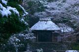 雪の法然院山門