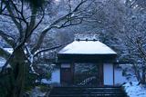 安楽寺 淡雪の山門