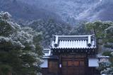 霊鑑寺 淡雪の表門