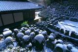 愛宕念仏寺の雪化粧した千二百羅漢