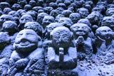 愛宕念仏寺の雪化粧した羅漢像その弐