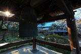 東慶寺 鐘楼越しの白梅