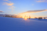 夕陽のマイルドセブンの丘