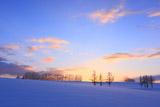 マイルドセブンの丘の雪原
