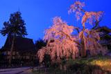 淨専寺本堂とライトアップ