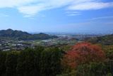 天保古平家一本桜から源平最後の合戦場を見下ろす