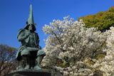 熊本城の桜 加藤清正公銅像