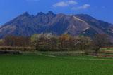 牧草地と阿蘇根子岳