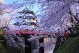弘前城 下乗橋と天守(再)