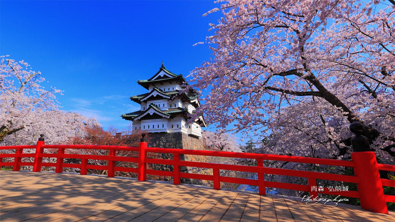 弘前城 下乗橋 壁紙