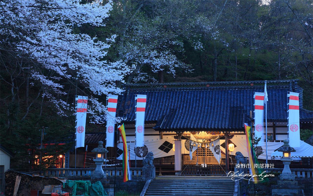 遠野市 南部神社の桜 壁紙