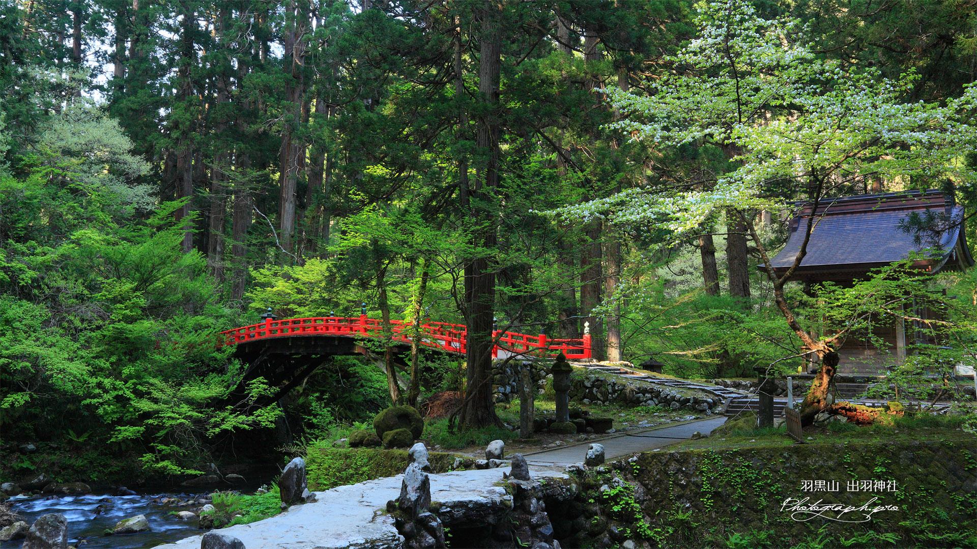 羽黒山 祓川に架かる神橋