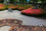 三尊五祖の石庭とハスキー