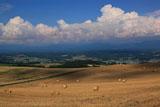夏雲と麦稈ロール