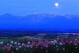 満月の深山峠