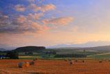 富良野の夕焼けの丘
