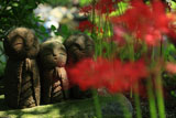 長谷寺のヒガンバナと和み地蔵