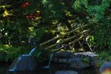 鎌倉長谷寺の妙智池とヒガンバナ