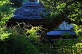 鎌倉円応寺 ハギと鐘楼