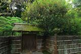 東慶寺 寒雲亭の金木犀