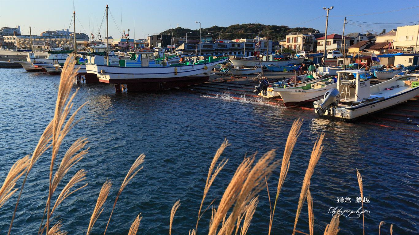 鎌倉腰越 ススキと漁船 壁紙