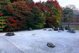 実相院 紅葉の石庭