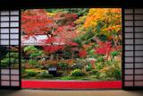 実相院 客殿から紅葉の山水庭園