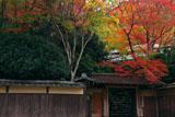 瑠璃光院山門の紅葉