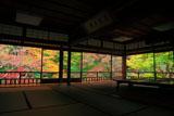 瑠璃光院 書院から瑠璃の庭の紅葉